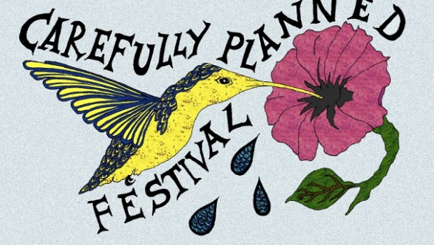 NEWS: A CAREFULLY PLANNED FESTIVAL – 60+ ACTS FOR £10