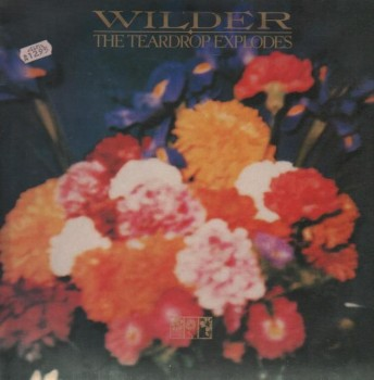 the_teardrop_explodes-wilder(1)