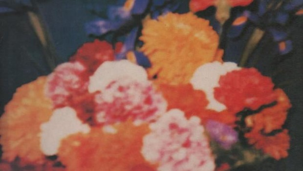 Album Review: Teardrop Explodes – Wilder (Deluxe Edition)
