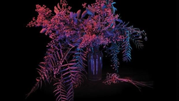 Album Review: Au Revoir Simone – Move In Spectrums