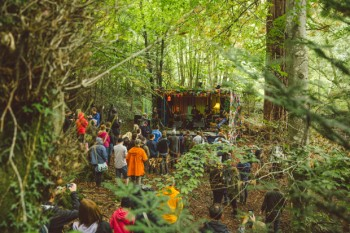 Lost In The Woods Stage
