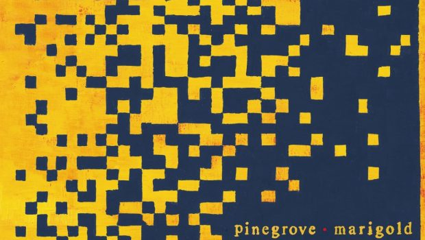 ALBUM REVIEW: PINEGROVE - MARIGOLD