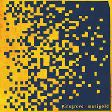 ALBUM REVIEW: PINEGROVE - MARIGOLD