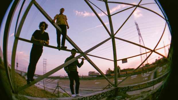 INTERVIEW: FLATWORMS