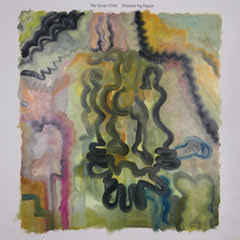 ALBUM REVIEW: THE GREEN CHILD - SHIMMERING BASSET